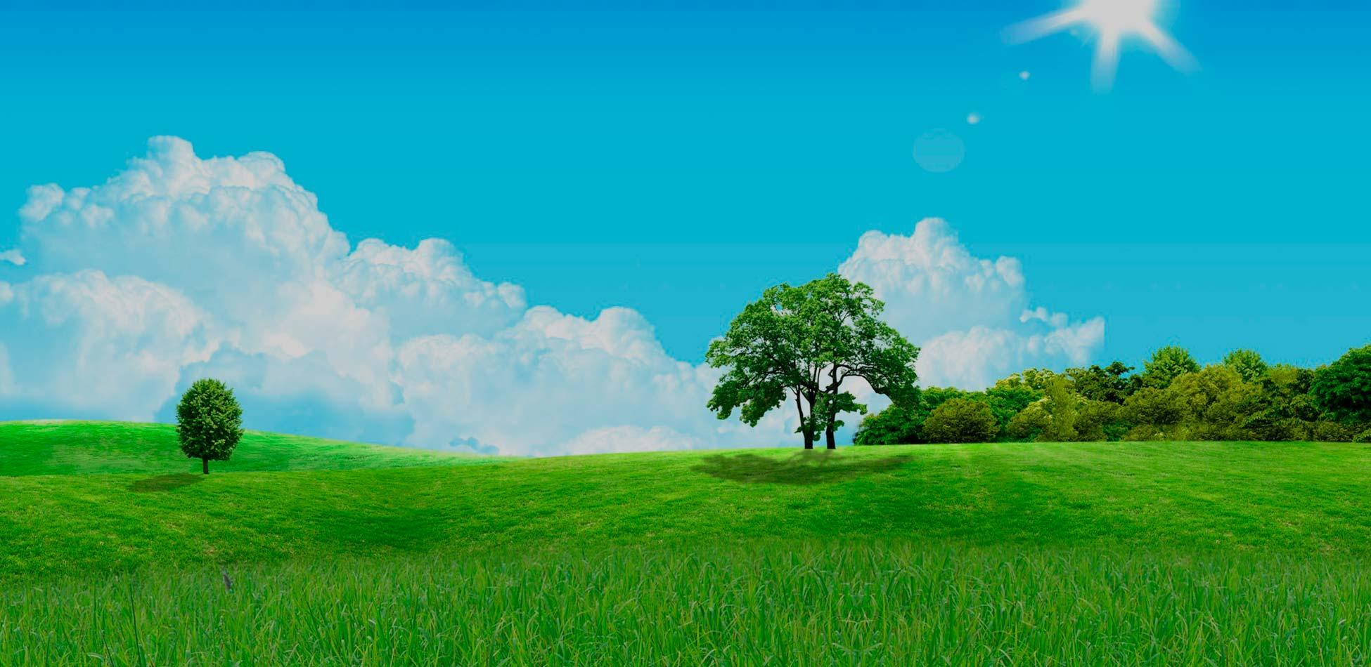 Новое небо и новая земля